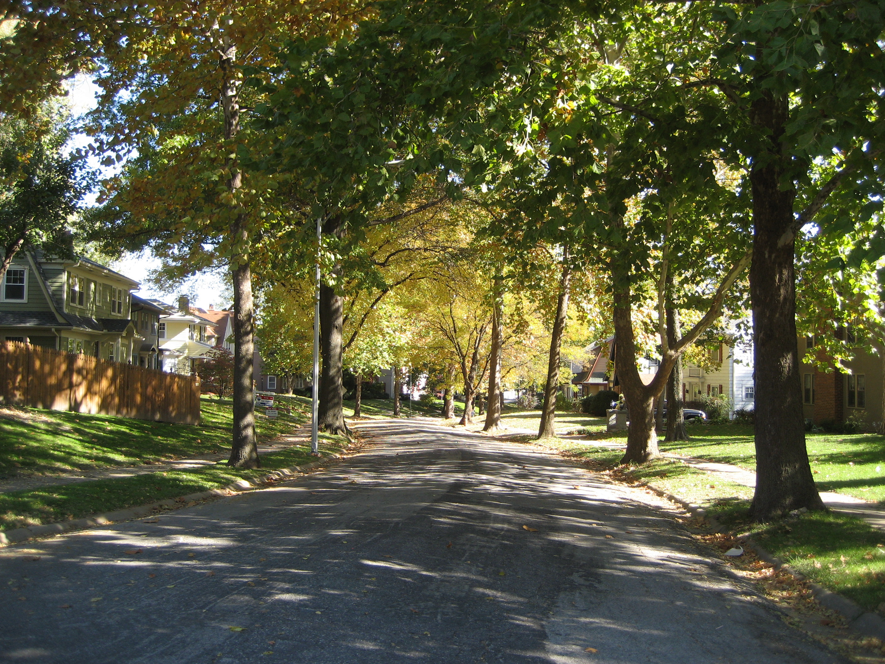 shaded neighborhood street
